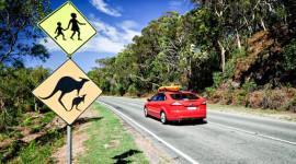Khó như lấy bằng lái xe ở Australia