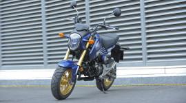 Honda MSX 125 bắt nguồn từ đâu?
