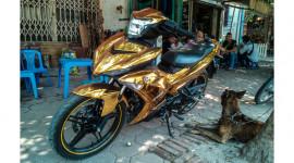 """Yamaha Exciter 150 phủ """"vàng"""" tại Hà Nội"""