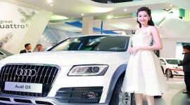 Hoa hậu Đặng Thu Thảo quyến rũ bên xe sang Audi