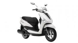 Yamaha Acruzo 125cc và những điểm nổi bật
