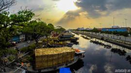 Không khí Tết tràn ngập đường phố Sài Gòn