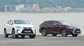 Gần 4.300 xe Toyota đến tay khách hàng Việt trong tháng 5
