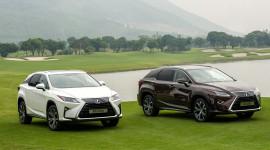 Doanh số bán hàng của Lexus Việt Nam giảm mạnh trong tháng 7