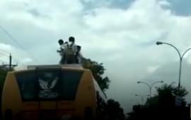Ấn Độ: Trẻ em mạo hiểm đi học trên nóc xe buýt