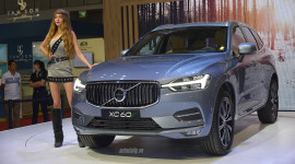 5 mẫu SUV tầm giá 2 tỷ đồng đáng sở hữu nhất tại Việt Nam