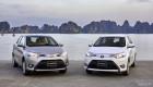 Toyota Việt Nam bán 4.397 xe trong tháng 10, giảm 20% so với cùng kỳ năm ngoái