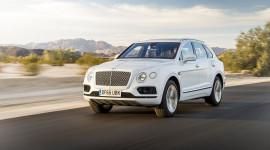 Bentley Bentayga V8 2019 có thể dùng chung động cơ với Cayenne Turbo