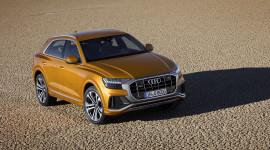 Audi Q8: Đối thủ của X6 và GLE Coupe
