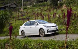 Doanh số xe Toyota lắp ráp tăng mạnh trong tháng 7