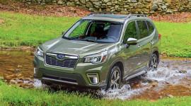 Đánh giá Subaru Forester 2019: Thêm an toàn, thêm tiện nghi