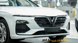 Lô xe VinFast đầu tiên được đưa đến 4 châu lục để thử nghiệm