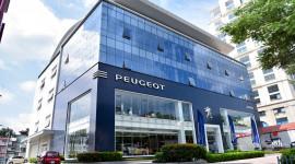 Chiến lược mở rộng hệ thống showroom Peugeot đạt chuẩn toàn cầu tại Việt Nam