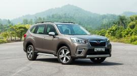 Giải mã sức hấp dẫn của Subaru Forester 2019