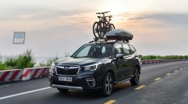 Subaru Forester - viên ngọc thô bị bỏ quên