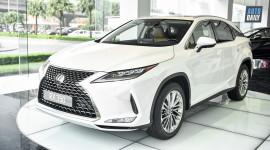 Chi tiết Lexus RX 350 phiên bản 2020 giá 4,12 tỷ đồng tại Việt Nam