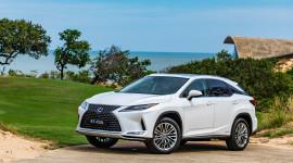 Doanh số xe Lexus năm 2019 tăng trưởng 157%