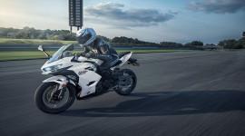 Kawasaki Ninja 400 ABS 2021 thêm phiên bản trắng ngọc đầy cuốn hút