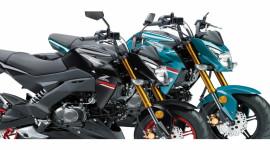Kawasaki Z125 Pro 2021 ra mắt, quyết đấu Honda MSX 125