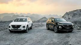 Phân khúc SUV 7 chỗ tháng 11/2020: Hyundai Santa Fe bỏ xa Toyota Fortuner