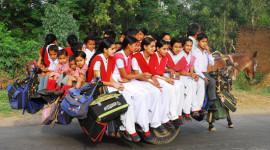 Trẻ em trên thế giới đến trường bằng gì?