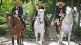 Mexico kỳ thú (phần 1) - Bí ẩn đảo Búp bê