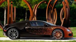 Siêu phẩm Bugatti Veyron Grand Sport Venet