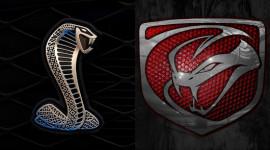 """Năm Tỵ nói về 2 con """"rắn độc"""" trong làng siêu xe"""
