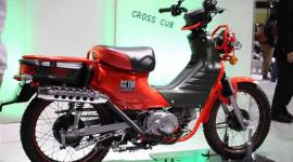 """Honda giới thiệu Cub """"độc"""" 110cc"""
